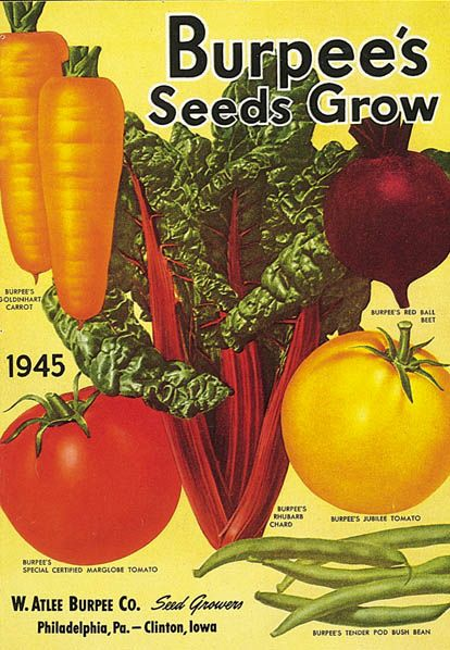 I have always liked these colorful seed packets