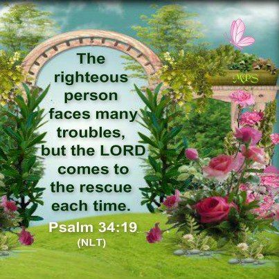 Bible Alive: Ps. 34:19 Many are the afflictions of the righteous: but the Lord delivereth him out of them all