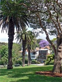 Clark Park in Lavender Bay is a popular place to get married and free for ceremonies with under 60 guests