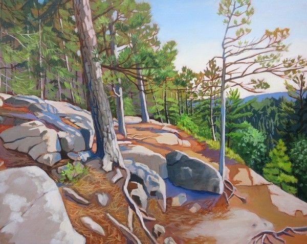 Cliff's Edge View