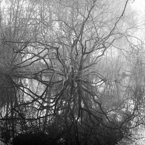 Reflections / Xénon.B.