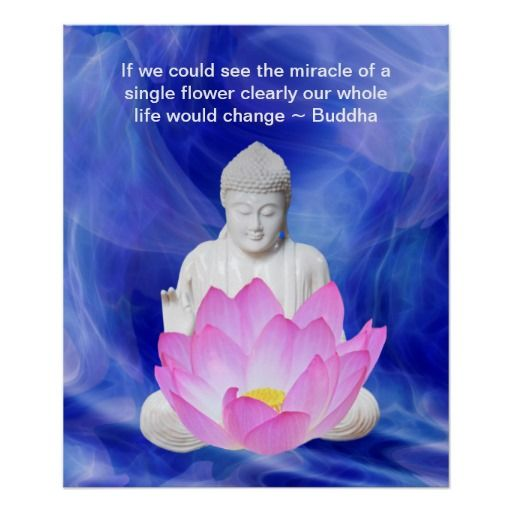 Buddha and the Lotus flower