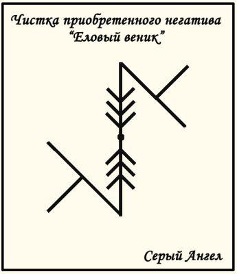 еловый веник