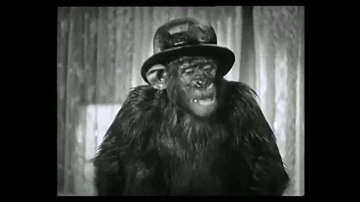 Laurel & Hardy. Best Clips 2