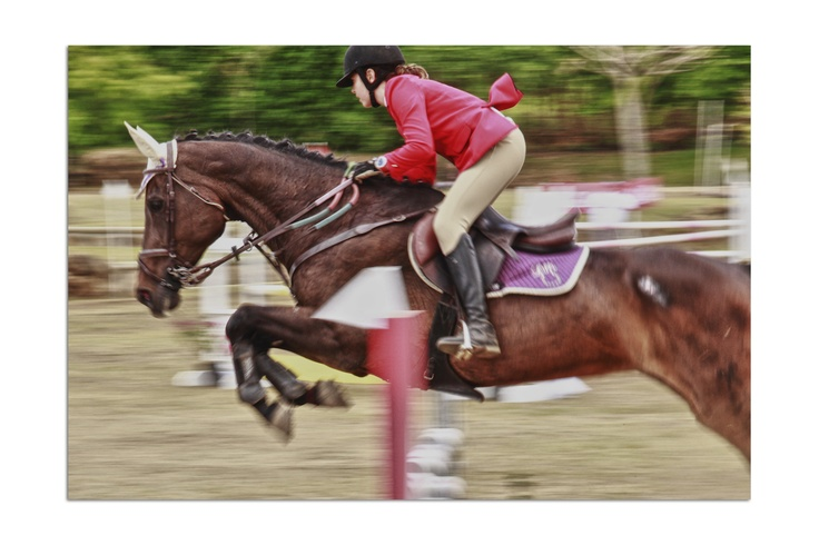 Horses, Equitación en Costa Rica