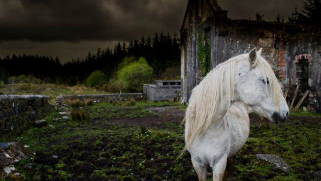 10 Creepy Fairy Tales You Probably Don't Know