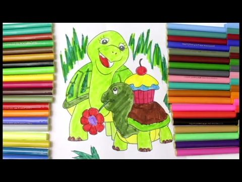 How to Draw Tortoise | Coloring Pages for Kids | Drawing and coloring step by step - YouTube