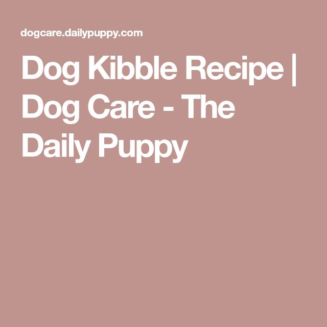 Dog Kibble Recipe   Dog Care - The Daily Puppy