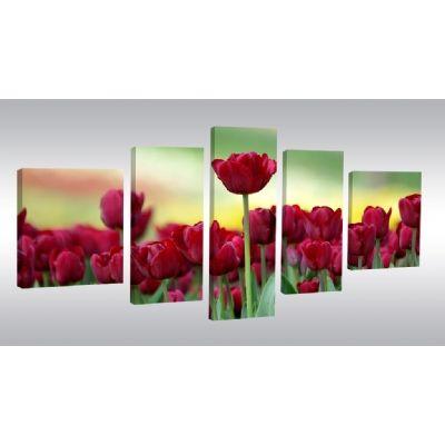 5 Parçalı Kanvas Tablolar | Parçalı Kanvas Tablolar, 3 parçalı kanvas tablolar, 5 parçalı kanvas tablolar