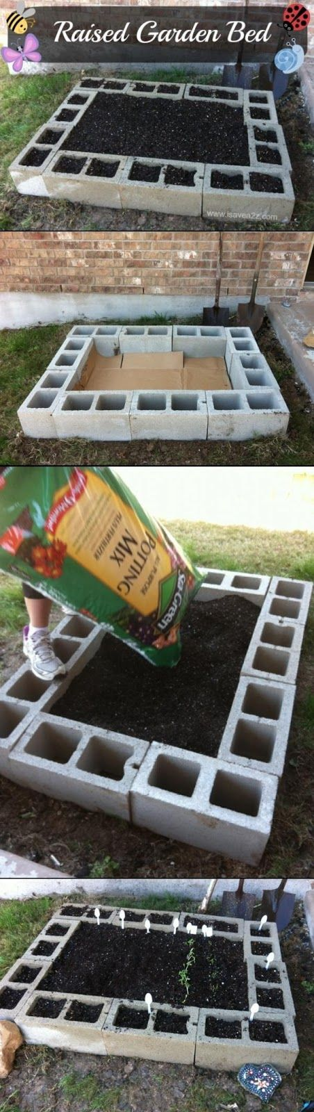 Raised beds with concrete blocks!