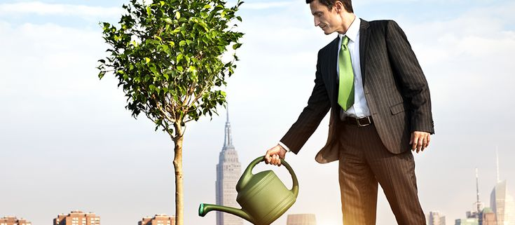Environmentally Friendly Business Giveaway Ideas by Discount Mugs