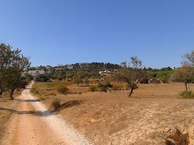 Barlaventos Travel Blog: Vista from Meia Praia towards Albadeira this afternoon.