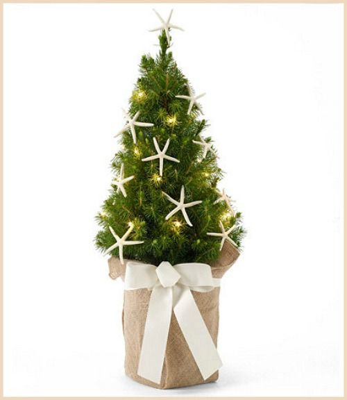 Best Christmas Decorations Long Island: 17 Best Ideas About Beach Christmas Trees On Pinterest