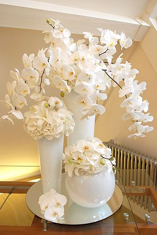 Google Image Result for http://www.johnprestonflowers.co.uk/images/images_corporate/corporate_flowers01.jpg