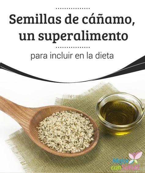Semillas de #cáñamo, un #superalimento para incluir en la #dieta  Aunque es de la #familia del cannabis, el cáñamo no contiene sustancias psicoactivas y el consumo de sus semillas es muy beneficioso para nuestro organismo #HábitosSaludables
