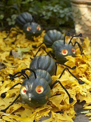 "Don't ""squash"" the ants. HA!"