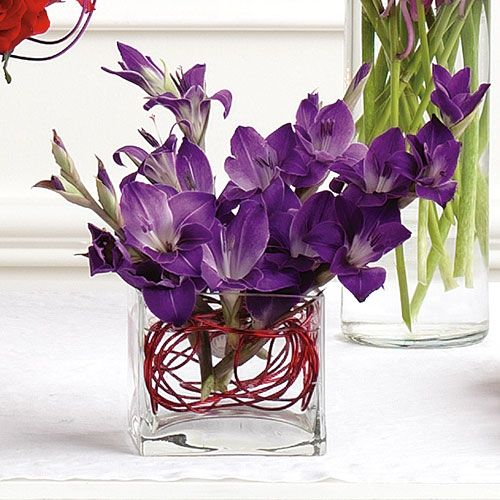 Best ideas about gladiolus arrangements on pinterest