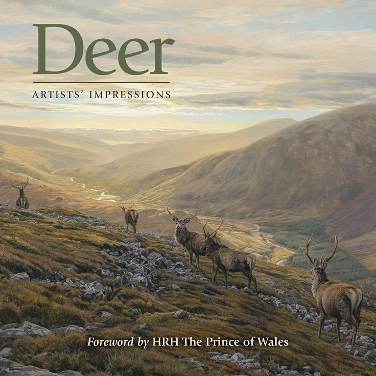 Deer: Artists' Impressions by Ashley Boon, Ben Hoskyns, Ian MacGillivray, Rodger McPhail, Martin Ridley, Jonathan Sainsbury, Keith Sykes, Owen Williams and Graham Downing | Quiller Publishing. In this book, 8 leading sporting artists have their own chapter in which they portray deer in their own style. From delicate pencil drawings to vivid watercolours and luxurious oils, they are images to be treasured.