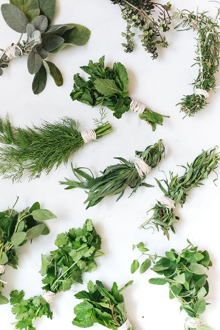 how to make an herb drying rack diy tutorial jojotastic herb drying racks herbs drying herbs how to make an herb drying rack diy