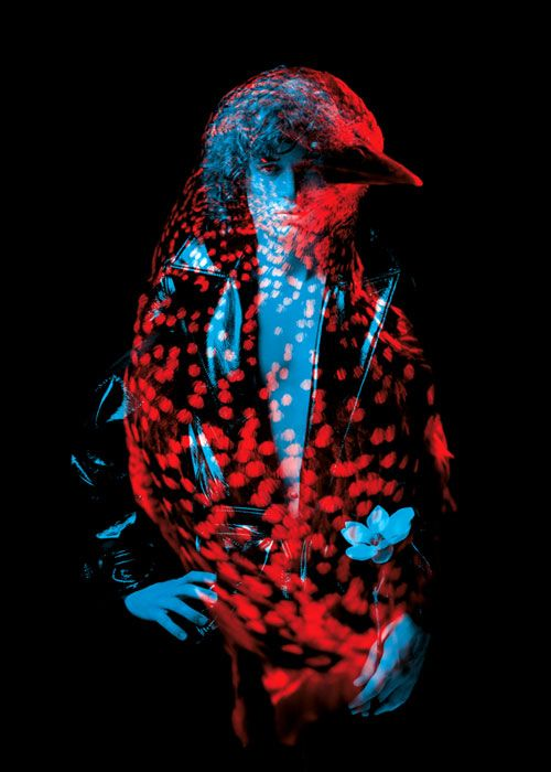 In this beautiful series titled 'Btes de mode' (or Fashion Animals), French artistic duo Thomas Couderc and Clment Vauchez of Helmo superimposed