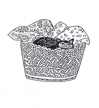 Gianduja schiaccia un pisolino sui cuscini della Nuova Nuova Domus Udine  Disegno di Mario Tudor - Milano
