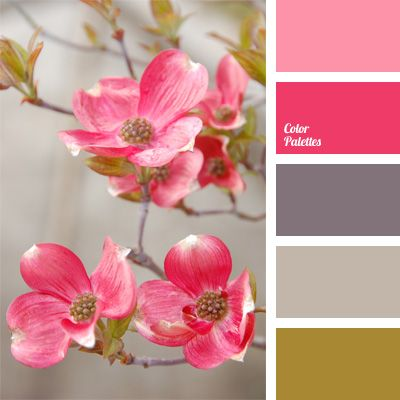 bright pink, color matching, combination of flowers for an interior decor, crimson color, gray-brown, pink and brown, room design color ideas, shades of brown, shades of gray, shades of pink.