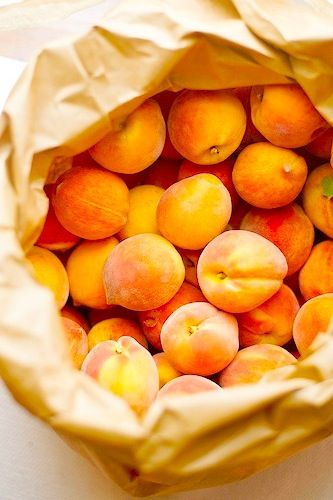Vibrant foods feed the creative mind - apricots have Robert Passal inspired.