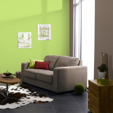 vert pastel 4 murs - Decoration Salon Vert Pistache
