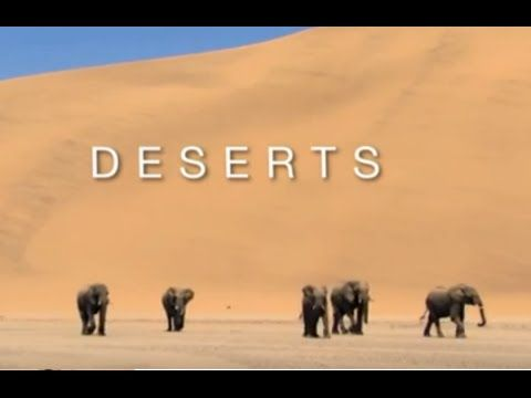 Documentary 2015 BBC Engsub - DESERTS - Discovery National Geographic Planet Earth Episode 5 - YouTube