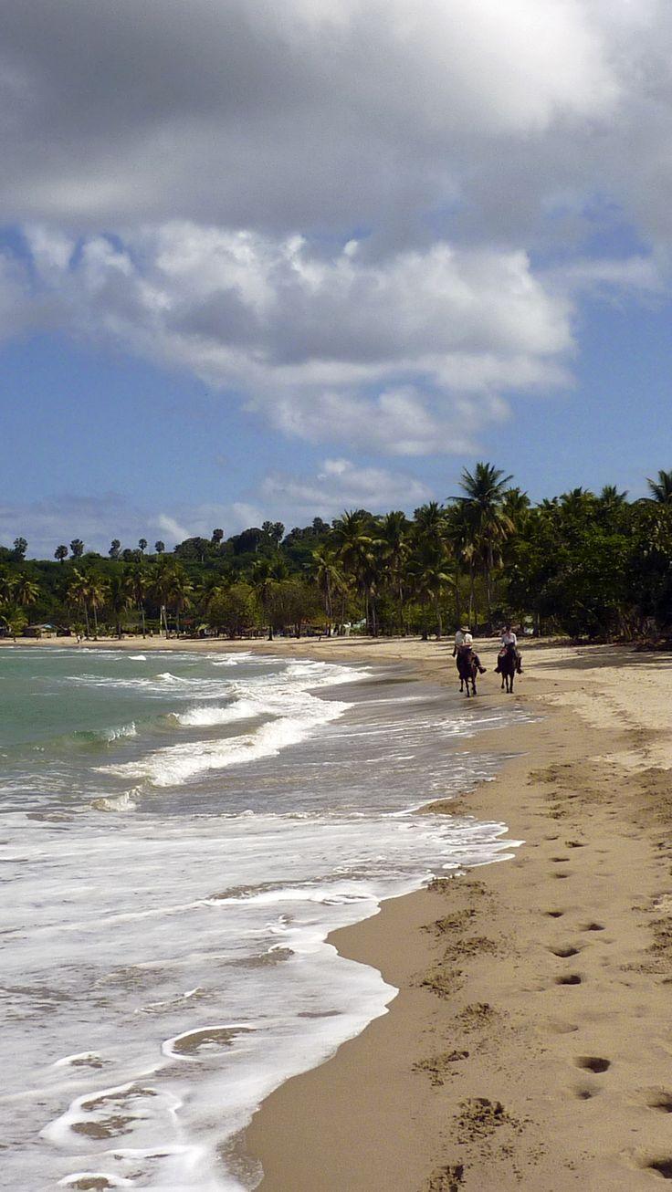 Chevauchez sur les plages paradisiaques de Caraïbes en République Dominicaine #plage #cheval