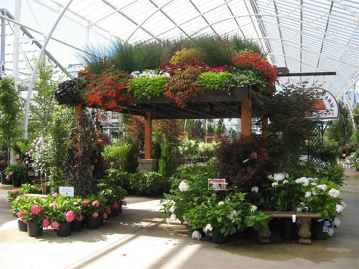 17 Best Images About Southern California Spring Garden 400 x 300