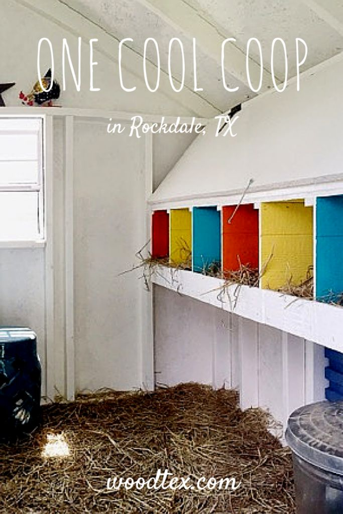 Check out this fun & fancy Chicken Coop interior! Chicken Coop decor is so light and airy.
