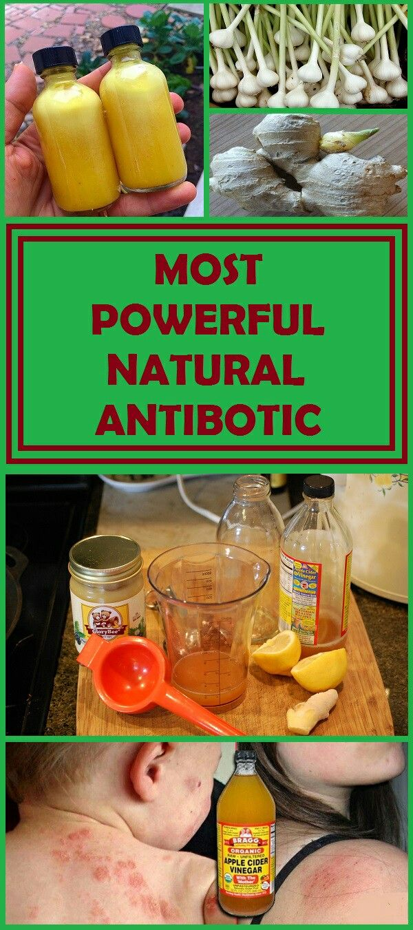 The Most Powerful Natural Antibiotic Ever
