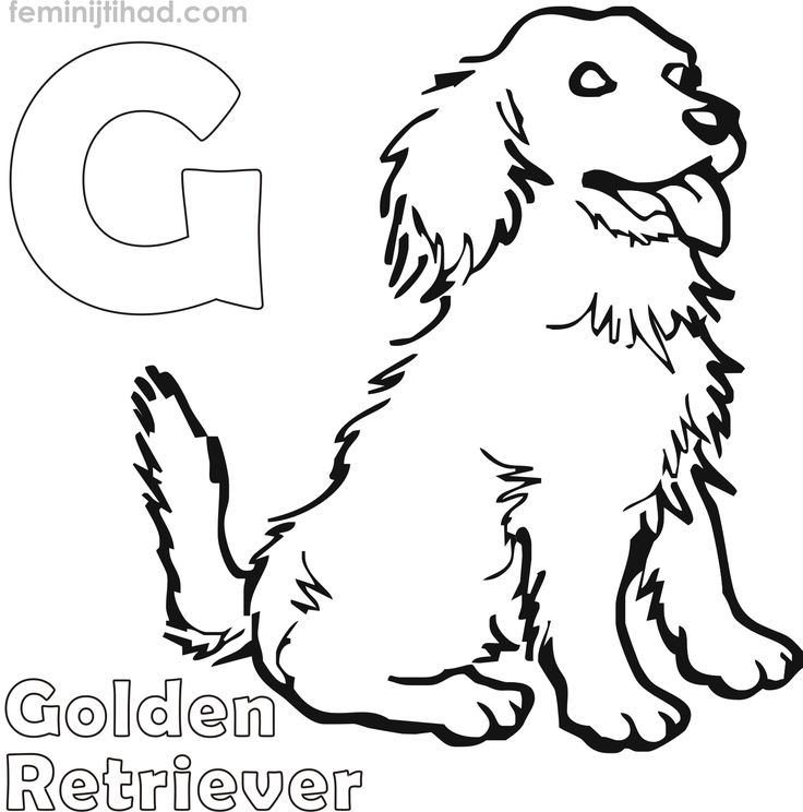 Golden Retriever Coloring Pages For Kids | Dog coloring ...