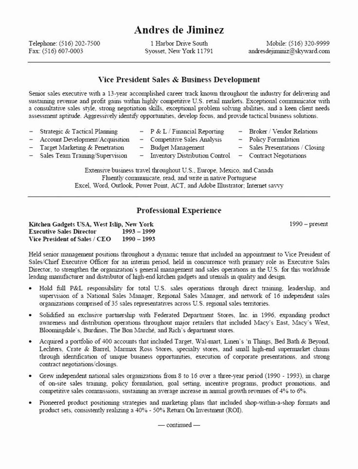 Awesome vp sales business development resume in 2020