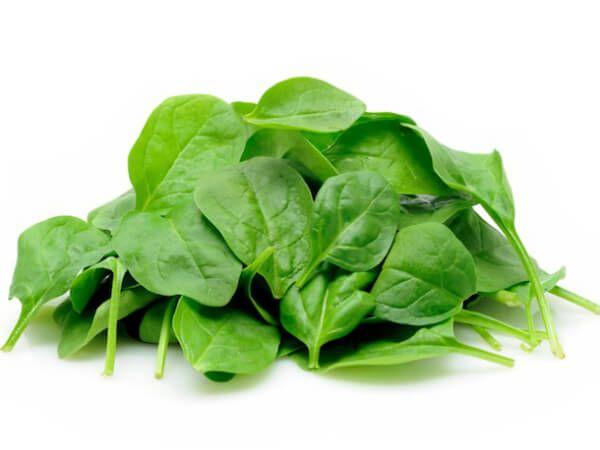 Informação Nutricional - Espinafre Cru: Calorias, gordura total, sódio, carboidratos, fibra, açúcar, proteína, zinco, fósforo, ferro, cálcio, ver mais...