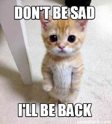 Image result for funny memes saying I'll be back next week