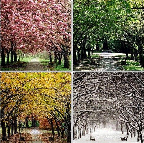 The seasons...!