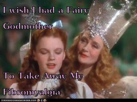Wish I had a Fairy Godmother