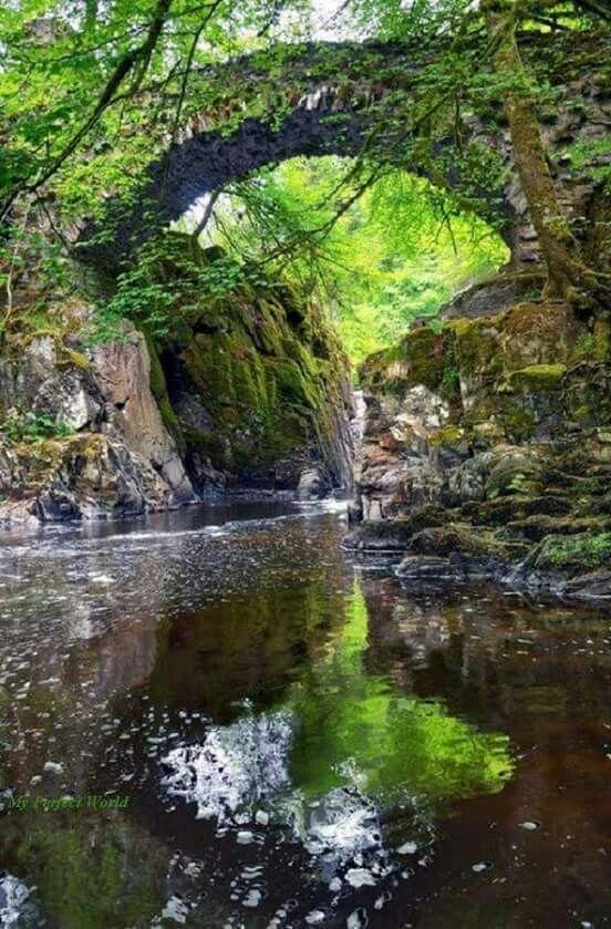 Beautiful nature. .....