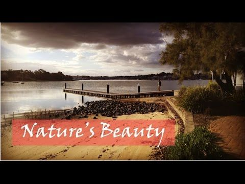 Nature's Beauty | Bay View Park | Sydney Australia  #sydney #australia #nature #photography #beauty of nature #bayview #video #boating