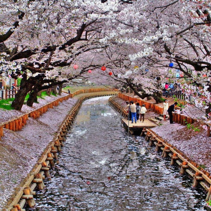 Shingashi Fluss in Kawagoe, Saitama, japan
