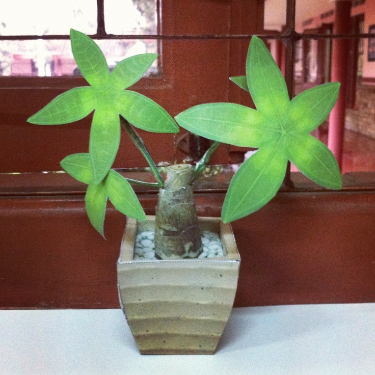 Another plant papercraft