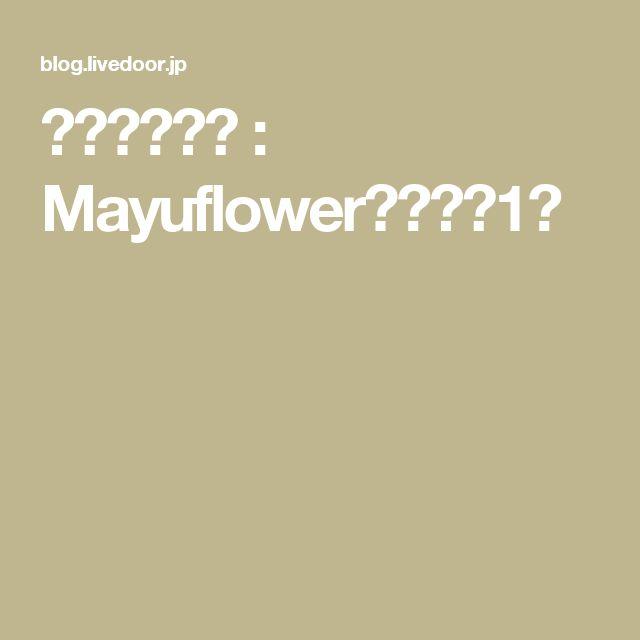 ゆず種化粧水 : Mayuflower気ままな1日