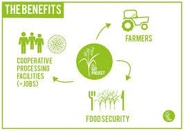 sustainable supply chain food creative - Google Search