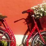 Farm Café Houstrup - Fahrrad-Deko