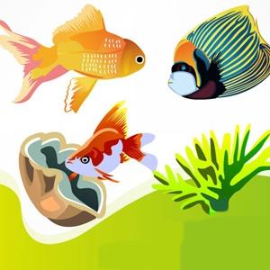 Google Image Result for http://stockvector.net/wp-content/uploads/2012/06/Fish-Vector-Illustrations.jpg