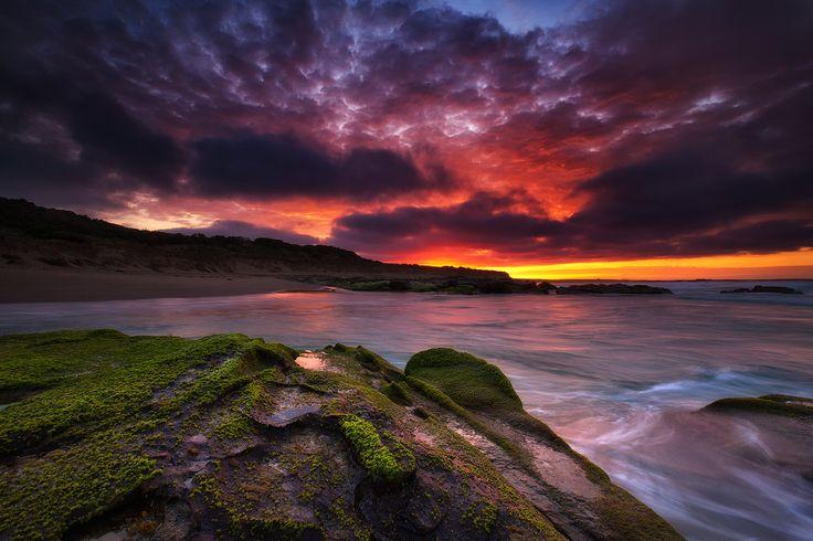 Crayfish Bay. - Crayfish Bay, Great Ocean Road.  Darren J.