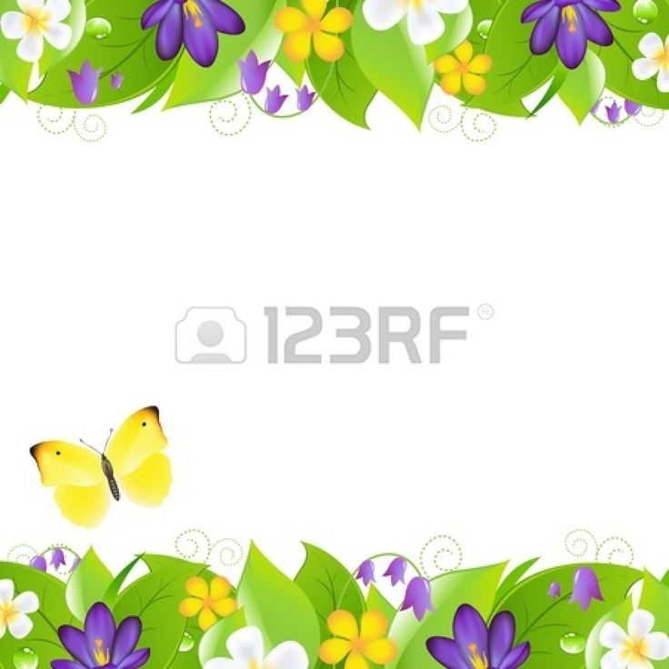 Spring Flowers And Butterflies Border Hd Images 3