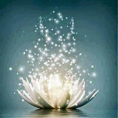 La Flor de Loto simboliza el desarrollo espiritual del ser humano, desde los niveles más bajos de conciencia hasta los más elevados.
